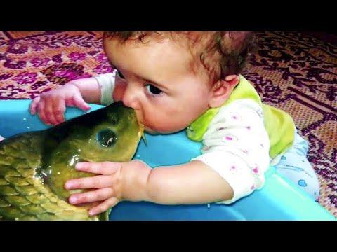 Прикольное видео 🐠 Прекрасный момент ребёнка с рыбой