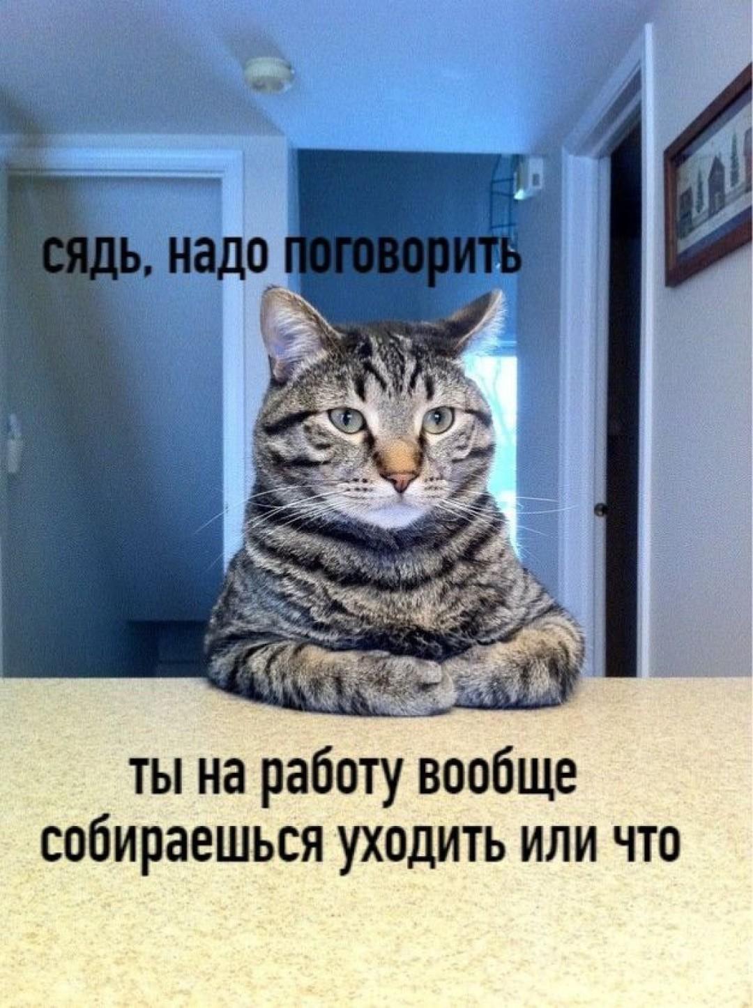 Мем: Сядь, надо поговорить