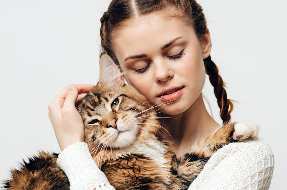 Самые добрые и ласковые породы кошек - топ 10