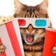 Можно ли кошке и собаке давать есть лук?